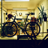 Cycling and Urban Mobility
